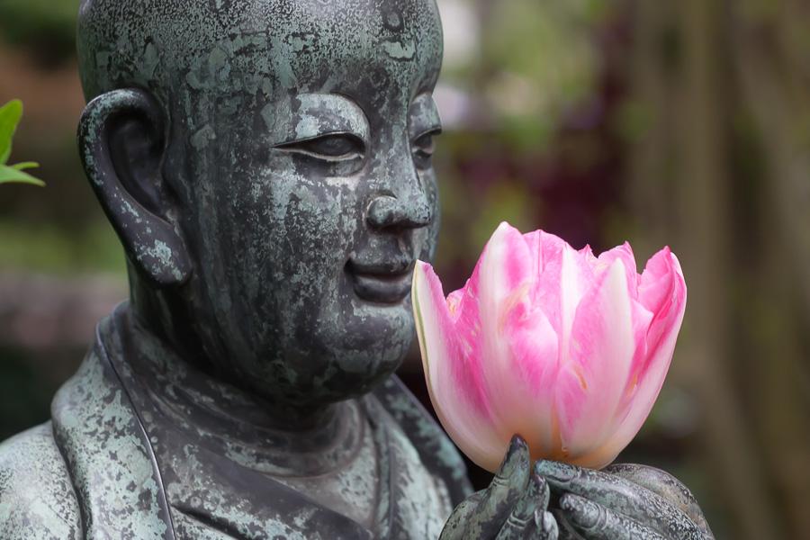 Blüten-Buddha