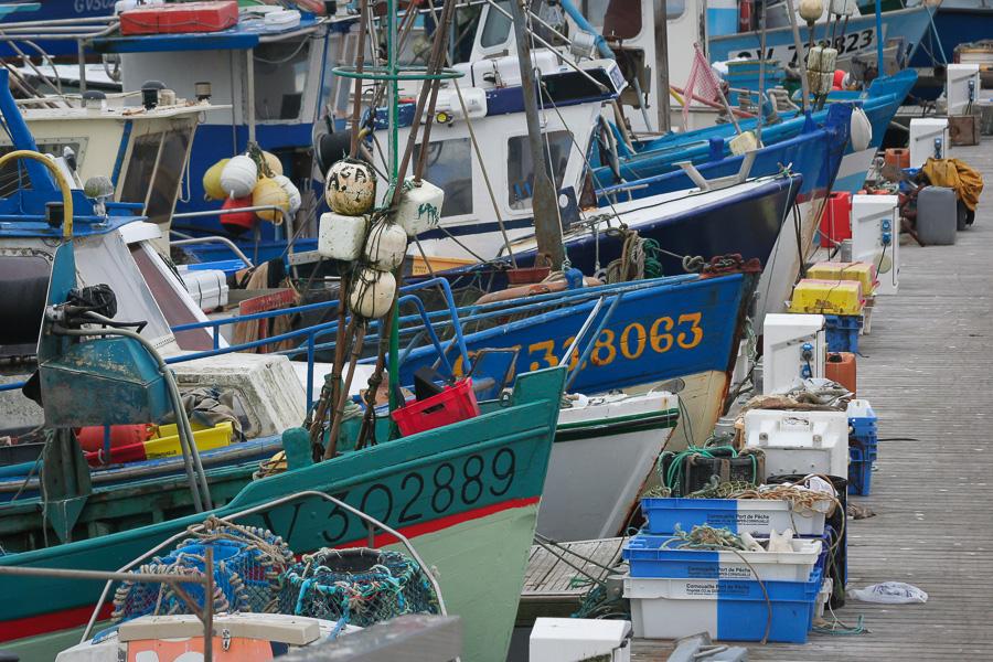 Fischerboote von Loctudy